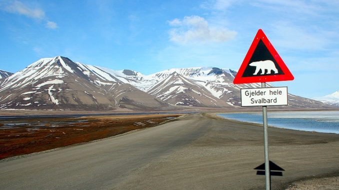 A road sign indicating the chance of polar bear appearance in Svalbard.