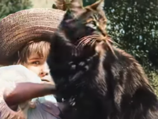 Little girl and cat in 1896 film, updated to modern video standards.